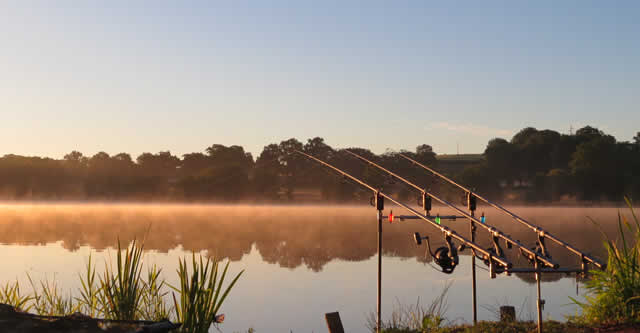 Etang De Brigueuil - carp fishing France