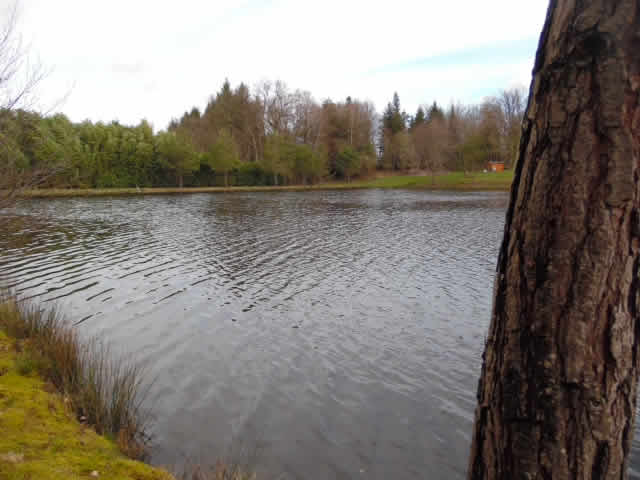 Jarlat Lake 0095